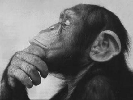 How-To-Be-A-Deep-Thinker